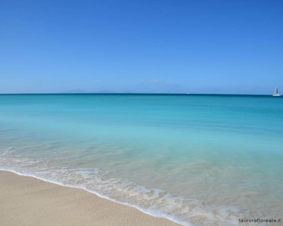 CARIBBEAN SEA | I COLORI DEI CARAIBI