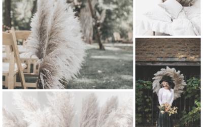 INSPIRATION BOARD | PAMPAS GRASS