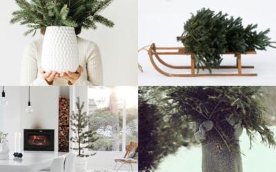 XMAS TREE   INSPIRATIONS